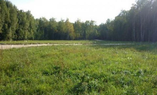 Загородный участок в Подмосковье