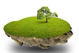Дешево купить землю. Купить дешевую землю.